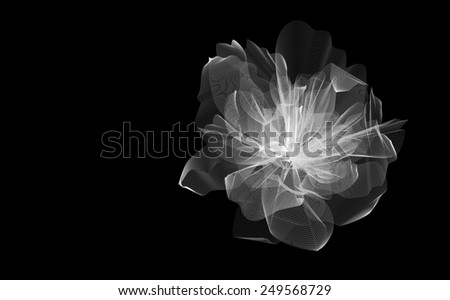 Flower illustration from lines on black background - stock photo