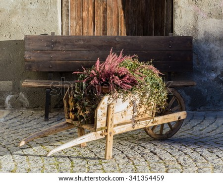 flower in the wheelbarrow for decoration - stock photo