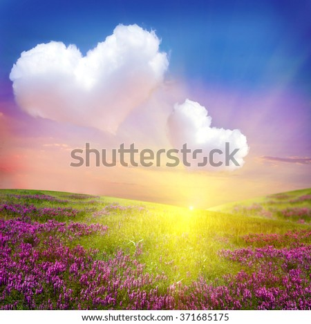 Flower landscape with heart clouds  - stock photo