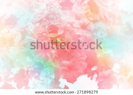 flower made by color filters  - stock photo