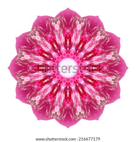 Flower mandala isolated on white background - stock photo