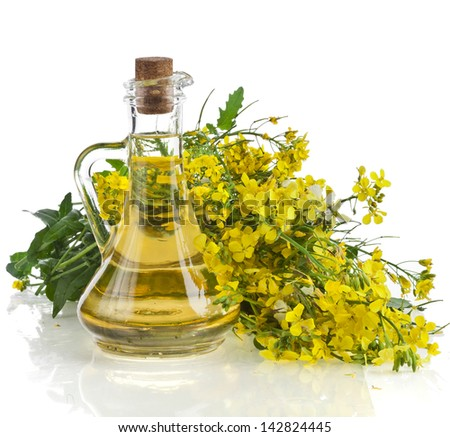Flower of a mustard, Rape blossoms with bottle decanter oil, isolated on white background - stock photo