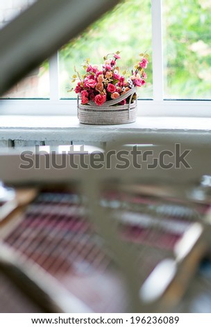 Flower on window - stock photo