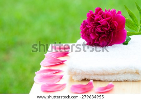 Flower petals spa bath concept - stock photo