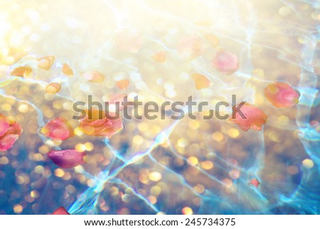 Flower petals with dew in blue water - stock photo