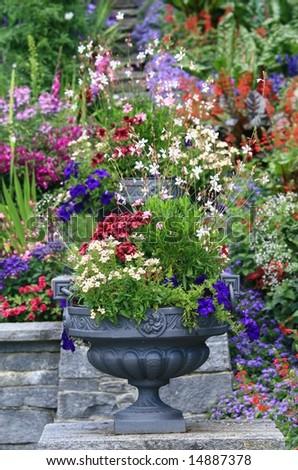 Flower-pot - stock photo
