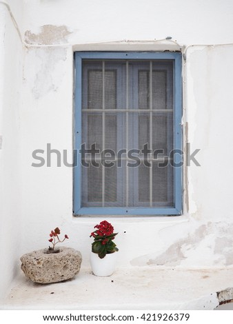 flower pot under a blue window frame on a white wall