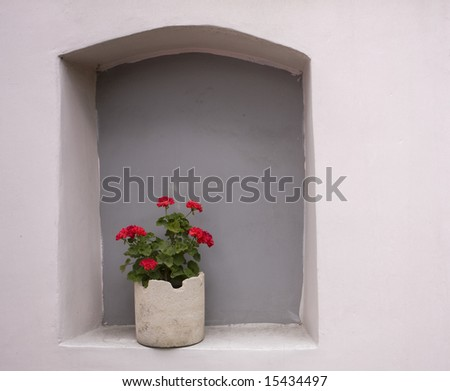 flower-pot with geranium on light pink wall - stock photo