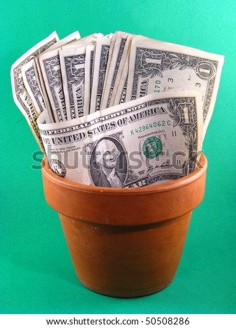 Flower Pot with Money
