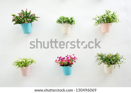 Flower pot with white wall - stock photo