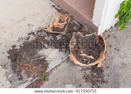 Flower pots broken flower Old derelict  fracture