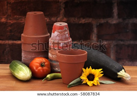 Flower pots on counter with brick background - stock photo
