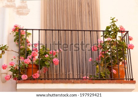 flower pots on the balcony of the house
