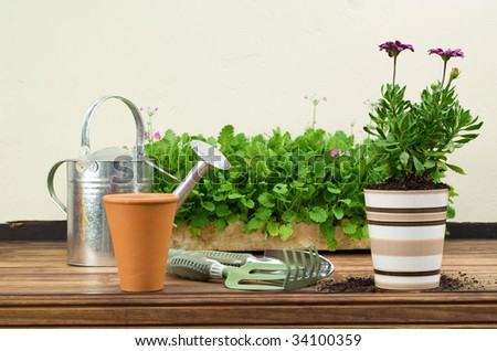 Flower Pots with Gardening Tools and Watering Can Displayed on Wooden Table - stock photo