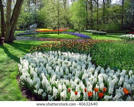 Flower season - stock photo
