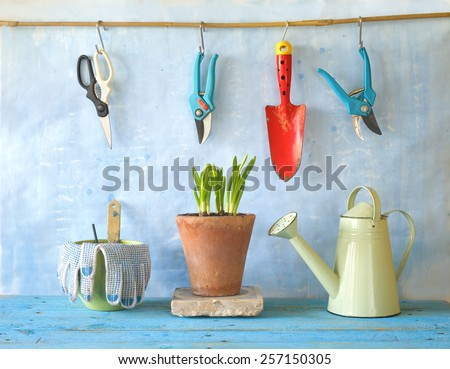 flower seedlings and gardening utensils - stock photo