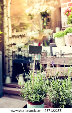 flower shop with blank black board sign in the pot of lavender - stock photo