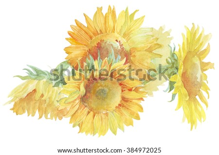 Flower sunflower does not lose its fire - stock photo