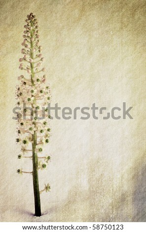 Flower-themed, color-burn grungy background. Textured surface. - stock photo