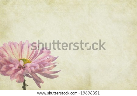 Flower themed, soft vintage paper background. - stock photo