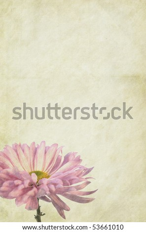 Flower themed, soft vintage paper background. Detailed texture. Copy-space. - stock photo