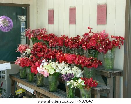 Flower Vendor - stock photo