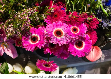 Flower wedding holiday decoration, beautiful purple pink gerbera flowers blooming bouquet - stock photo