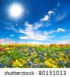 flowerbed. colorful flowers over blue sky - stock photo