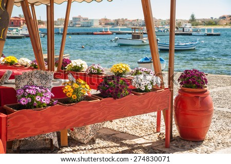 Flowered vases next to the harbor of the small sea village Marzamemi, Sicily, with fishing boats - stock photo