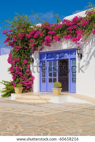 Flowering  bougainvillea at the door - feature Mykonos and Greece - stock photo