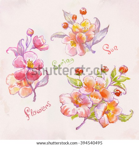 Flowering branches of apple tree in spring.  Painted by hand. Watercolor. Spring flowers - stock photo