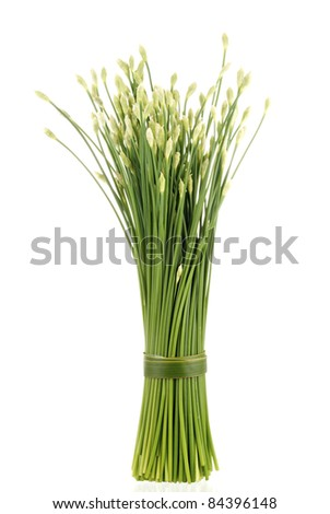 Flowering Chinese Garlic Chives also known as Ku Chai. Unsharpened file