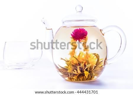 Flowering tea - stock photo