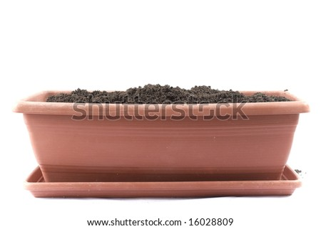 Flowerpot isolated on white Background . - stock photo