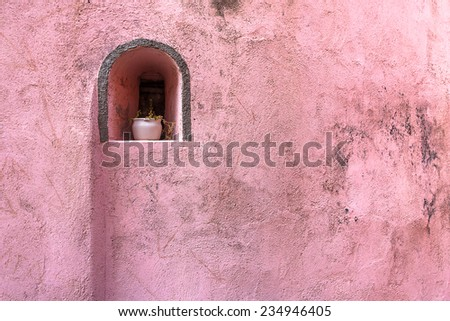 Flowerpot on old pink wall.