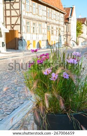 Flowerpot with flowers on the street of ancient European city, Kuldiga, Latvia - stock photo