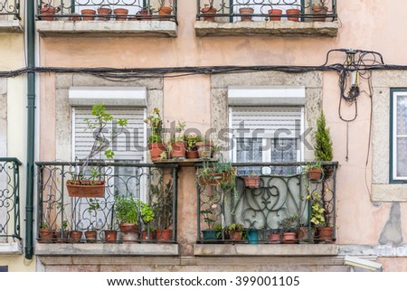 Flowerpots and house plants on an old weathered  balcony - stock photo