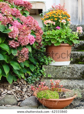 flowerpots on stairs of a white house - stock photo