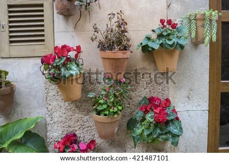 flowerpots street in the tourist island of Mallorca, Valdemosa city in Spain - stock photo