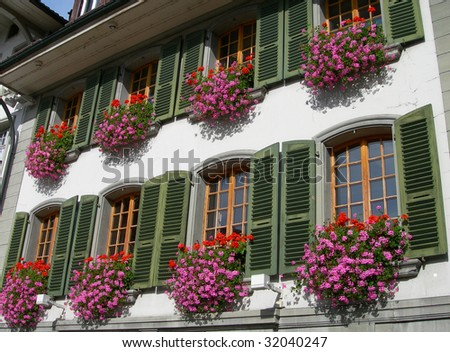 Flowers, against a white wall with green shutters - stock photo