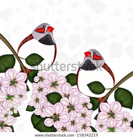 Flowers and birds. Illustration. - stock photo