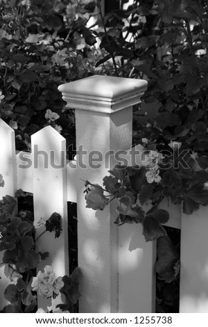 Flowers and fence post - stock photo