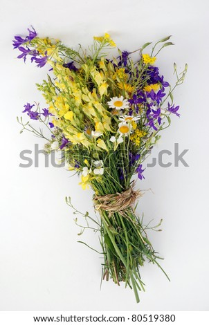 Flowers and herbares bunch - stock photo