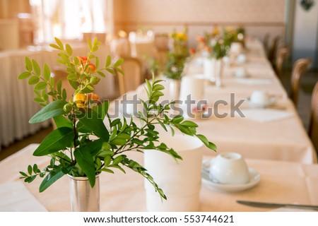 Twotone Vase Isolated Ceramic Vase On Stock Photo