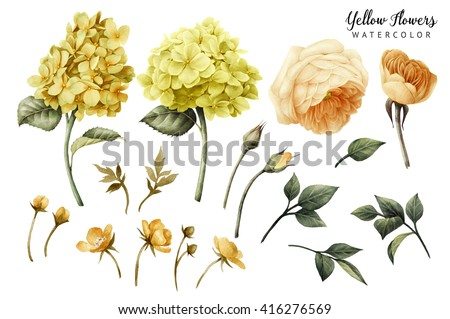 Flowers and leaves, watercolor, can be used as greeting card, invitation card for wedding, birthday and other holiday and  summer background. - stock photo