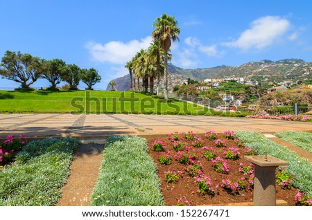 Flowers and palm trees in public tropical park in centre of Camara de Lobos town, Madeira island, Portugal