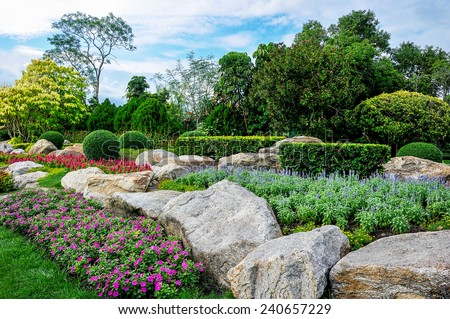Flowers and plant decorate in garden. - stock photo
