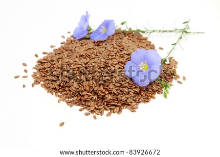 flowers and seeds of flax over white - stock photo