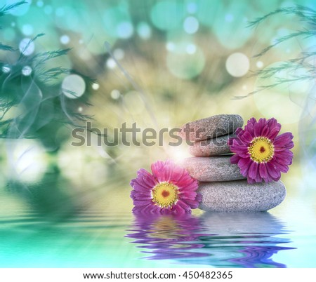 flowers and stones - stock photo