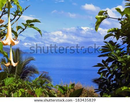 Flowers and Toba. North Sumatra, Indonesia. 2014 - stock photo